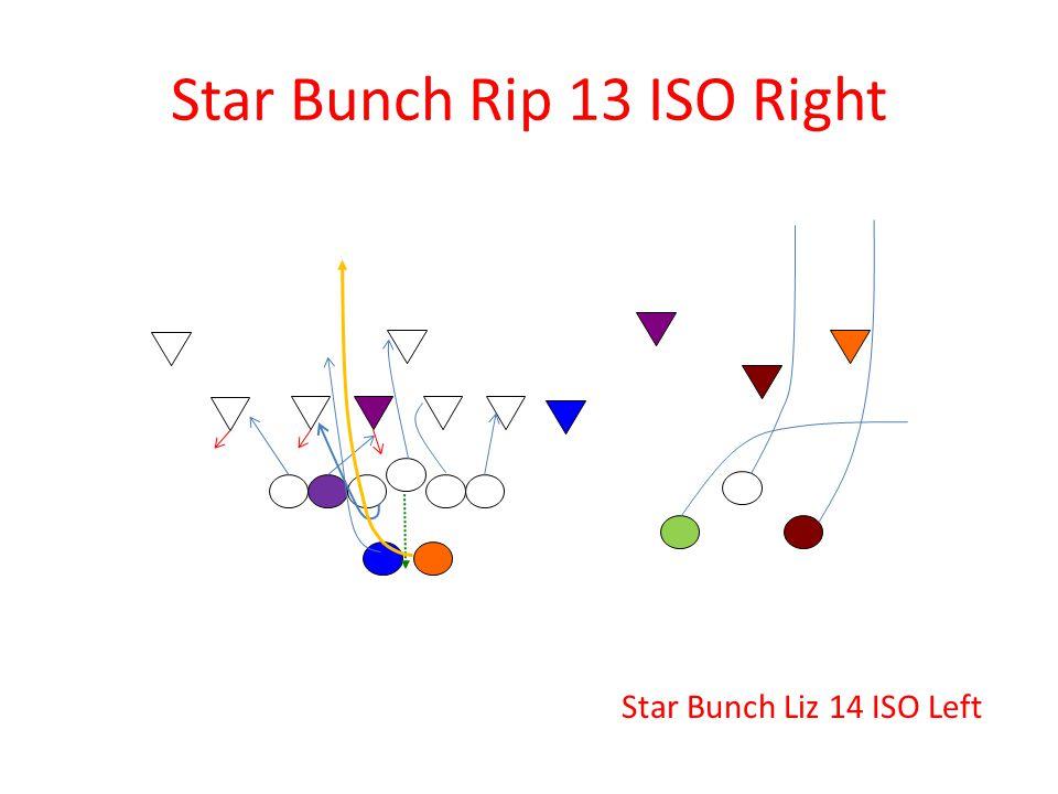 Star Bunch Rip 13 ISO Right Star Bunch Liz 14 ISO Left
