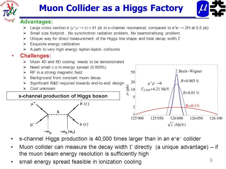 Muon Collider as a Higgs Factory Advantages:  Large cross section σ ( μ + μ - → h) = 41 pb in s-channel resonance( compared to e + e - → ZH at 0.2 pb