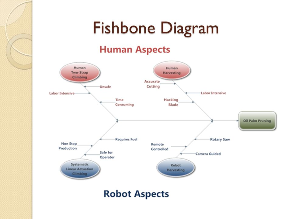 Fishbone Diagram Fishbone Diagram