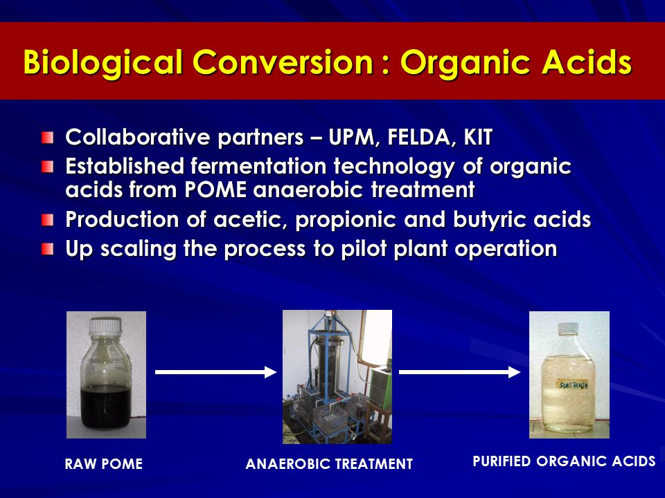 Biological Conversion : Organic Acids Collaborative partners – UPM, FELDA, KIT Established fermentation technology of organic acids from POME anaerobic treatment Production of acetic, propionic and butyric acids Up scaling the process to pilot plant operation PURIFIED ORGANIC ACIDS ANAEROBIC TREATMENTRAW POME