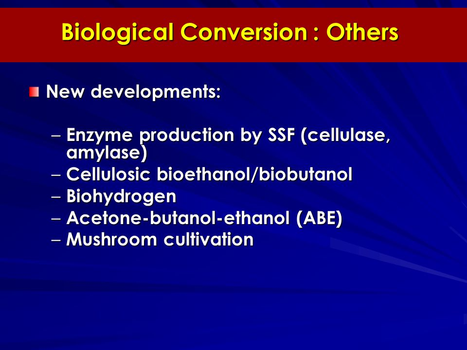 Biological Conversion : Others New developments: – Enzyme production by SSF (cellulase, amylase) – Cellulosic bioethanol/biobutanol – Biohydrogen – Acetone-butanol-ethanol (ABE) – Mushroom cultivation
