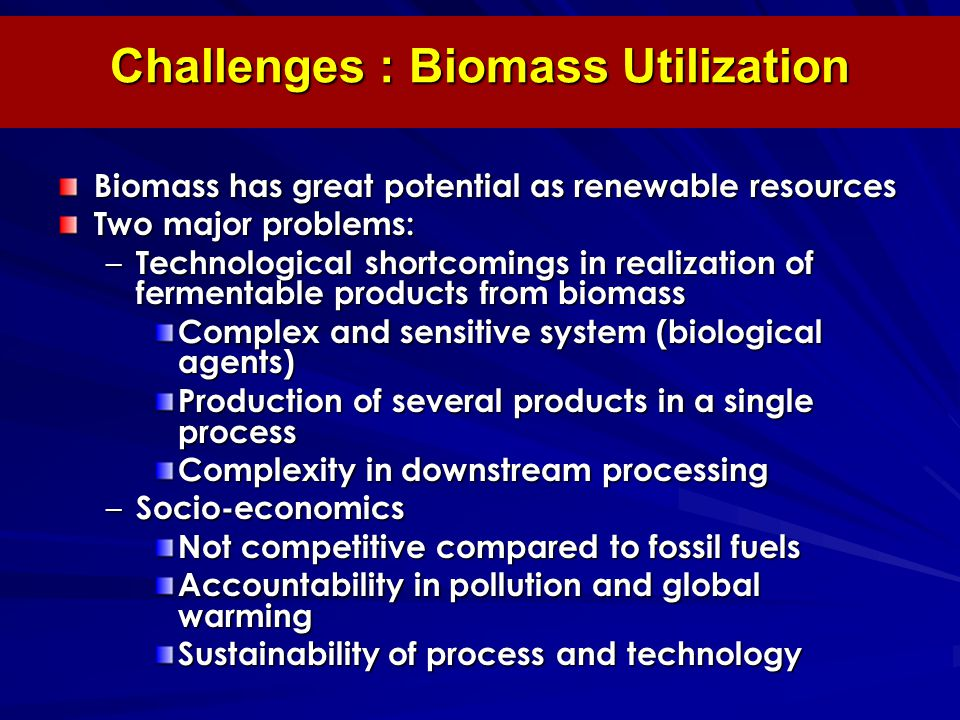 Challenges : Biomass Utilization Biomass has great potential as renewable resources Two major problems: – Technological shortcomings in realization of fermentable products from biomass Complex and sensitive system (biological agents) Production of several products in a single process Complexity in downstream processing – Socio-economics Not competitive compared to fossil fuels Accountability in pollution and global warming Sustainability of process and technology