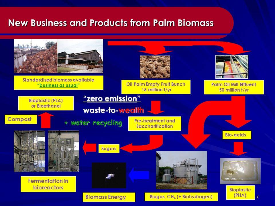 7 New Business and Products from Palm Biomass New Business and Products from Palm Biomass Oil Palm Empty Fruit Bunch 16 million t/yr Palm Oil Mill Effluent 50 million t/yr Standardised biomass available business as usual Sugars Bioplastic (PLA) or Bioethanol Pre-treatment and Saccharification Fermentation in bioreactors Biomass Energy Bio-acids Bioplastic (PHA) Biogas, CH 4 (+ Biohydrogen) zero emission zero emission waste-to-wealth + water recycling Compost