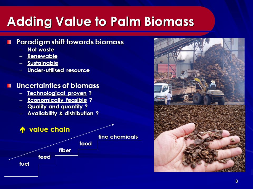 8 Adding Value to Palm Biomass Paradigm shift towards biomass – Not waste – Renewable – Sustainable – Under-utilised resource Uncertainties of biomass – Technological proven .