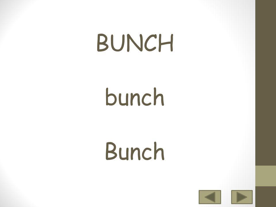 BUNCH bunch Bunch 12 3456 7 8 9 10