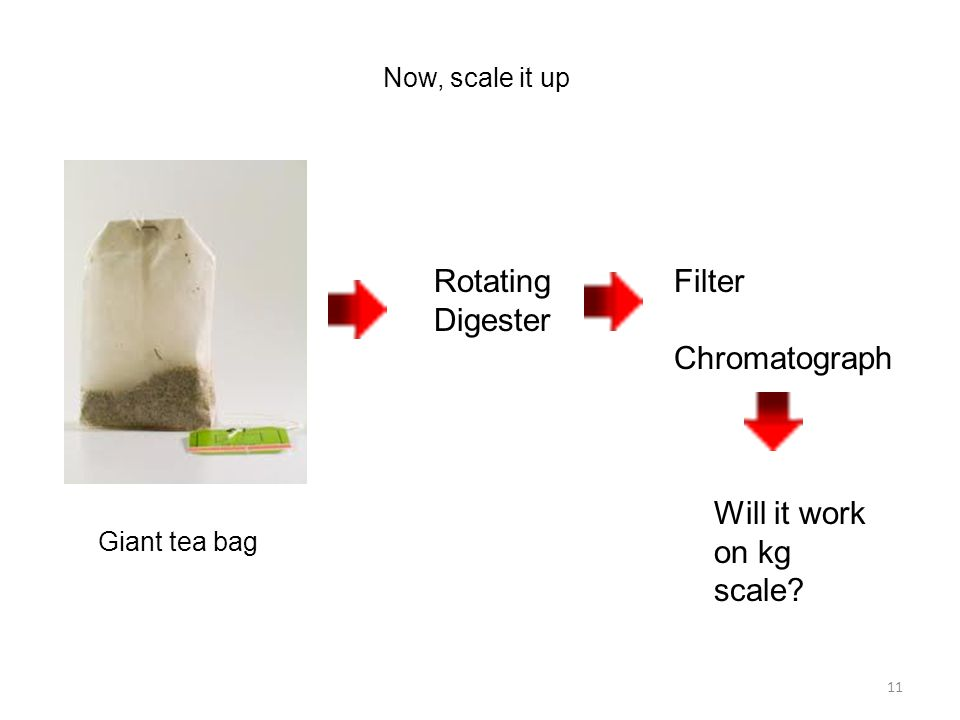 11 Now, scale it up Rotating Digester Giant tea bag Filter Chromatograph Will it work on kg scale