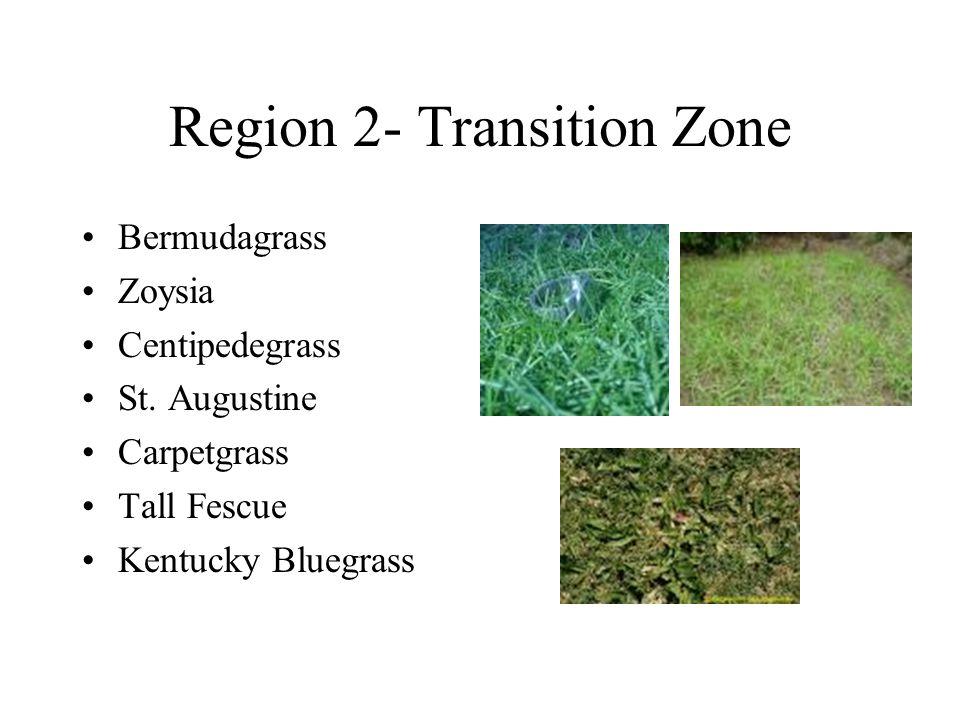 Region 3-Warm Season St. Augustine Bermuda Carpetgrass Zoysia Bahiagrass