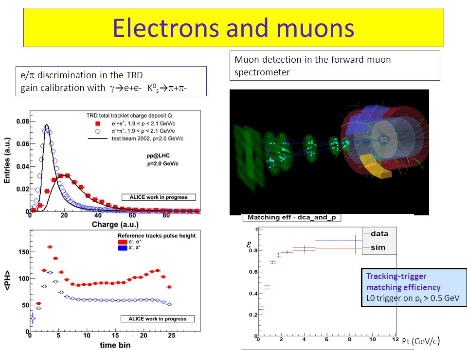 Electrons and muons 18 Tracking-trigger matching efficiency L0 trigger on p t > 0.5 GeV e/  discrimination in the TRD gain calibration with  →e+e- K 0 s →  +  - Muon detection in the forward muon spectrometer Pt (GeV/c ) 