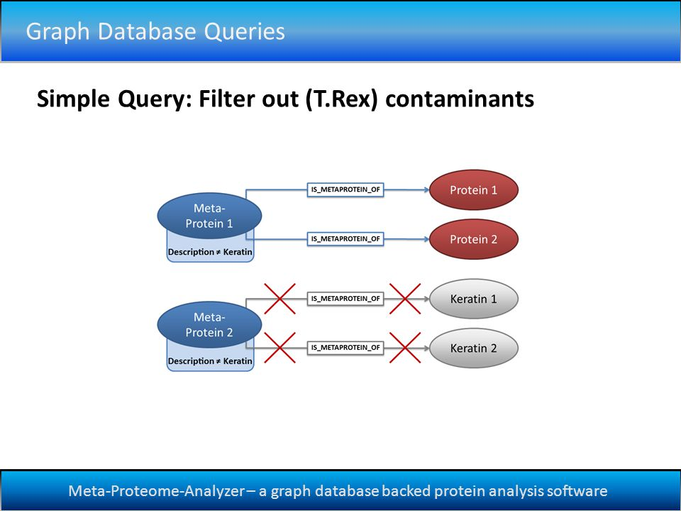 Meta-Proteome-Analyzer – a graph database backed protein analysis software Graph Database Queries Simple Query: Filter out (T.Rex) contaminants