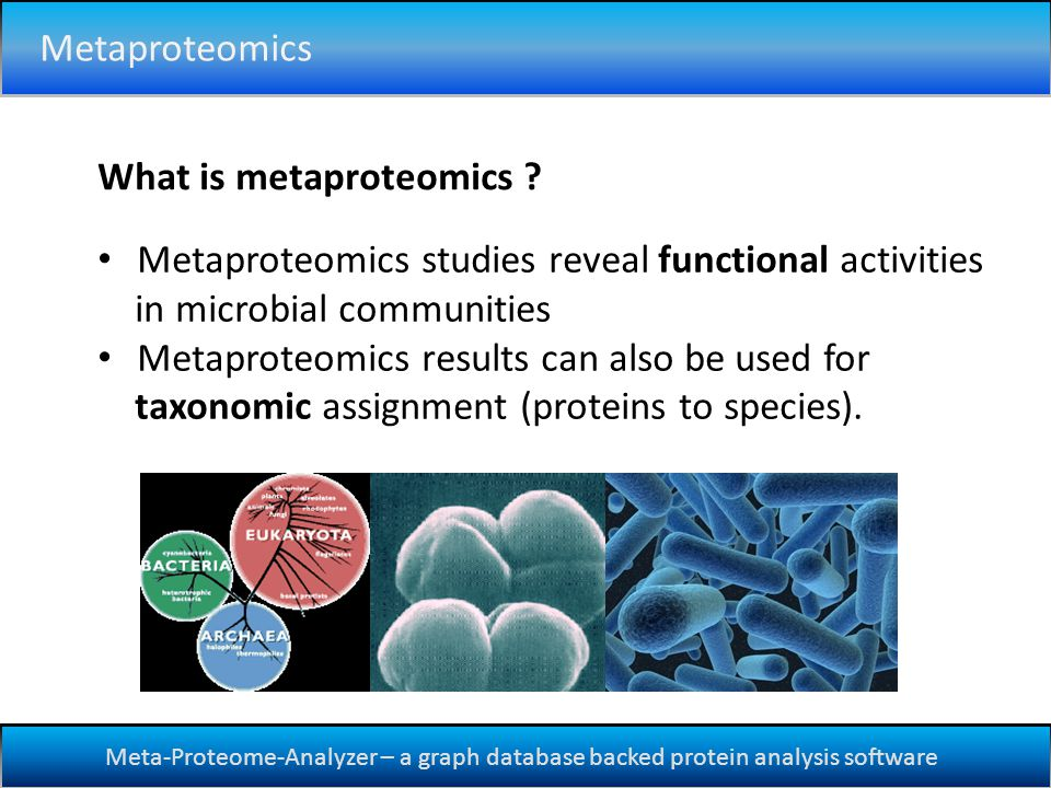 Meta-Proteome-Analyzer – a graph database backed protein analysis software Metaproteomics Metaproteomics studies reveal functional activities in microbial communities Metaproteomics results can also be used for taxonomic assignment (proteins to species).