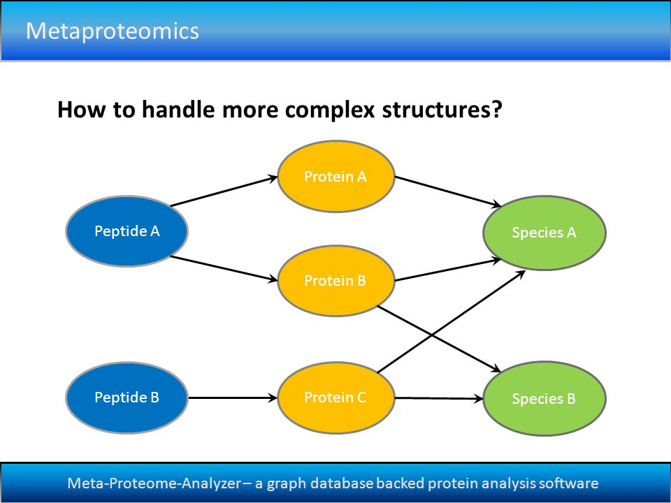 Meta-Proteome-Analyzer – a graph database backed protein analysis software How to handle more complex structures.