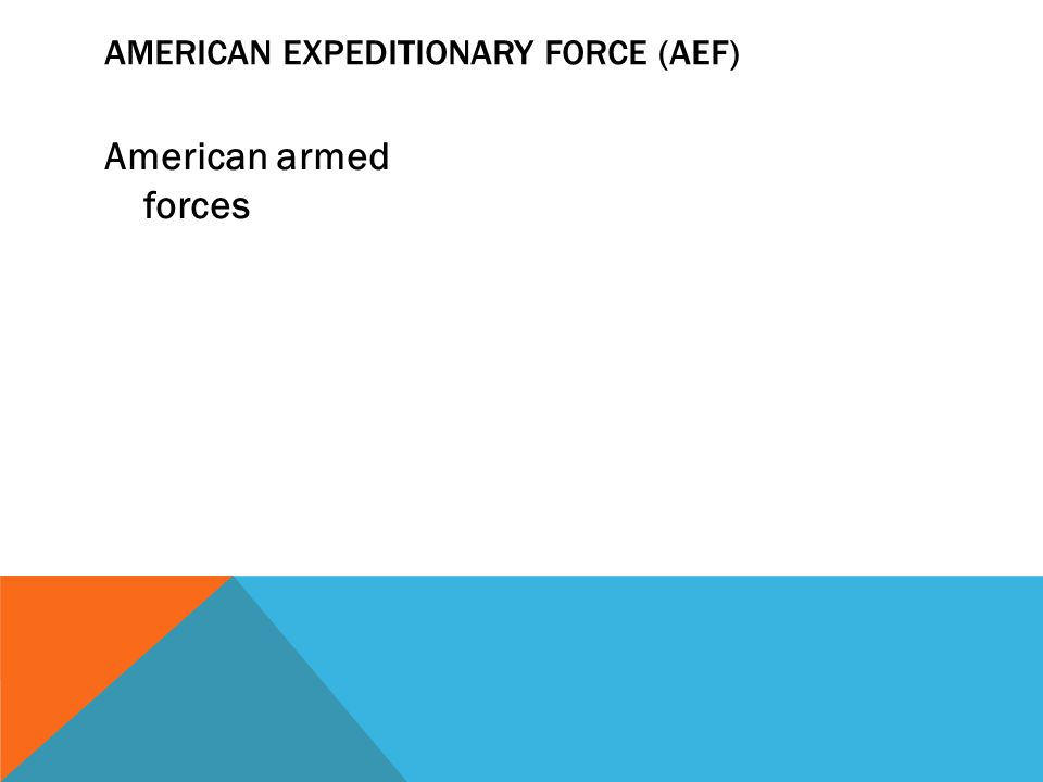 American armed forces AMERICAN EXPEDITIONARY FORCE (AEF)
