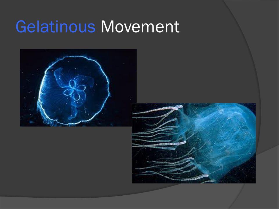 Gelatinous Movement