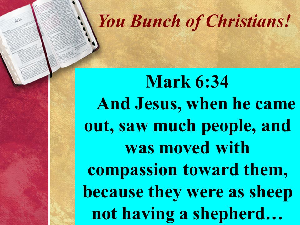 You Bunch of Christians! Mark 6:34 And Jesus, when he came out, saw much people, and was moved with compassion toward them, because they were as sheep