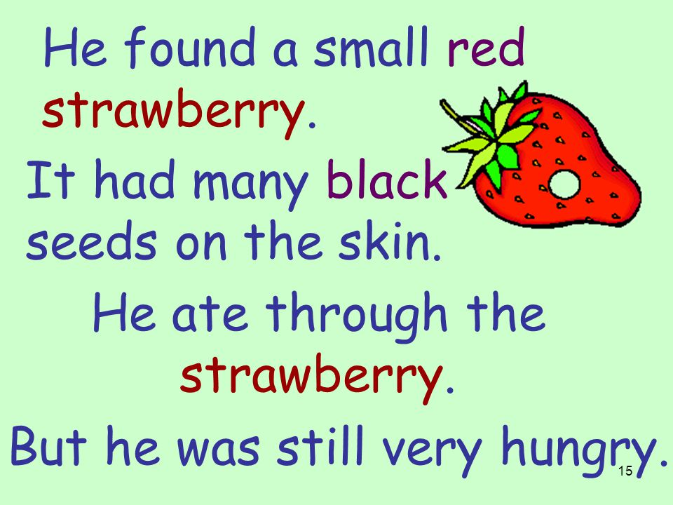 14 He found a small red raspberry. He ate through the soft raspberry. But he was still very hungry.