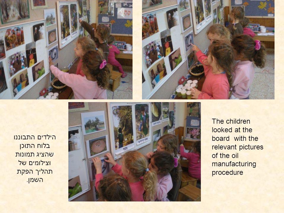 הילדים התבוננו בלוח התוכן שהציג תמונות וצילומים של תהליך הפקת השמן. The children looked at the board with the relevant pictures of the oil manufacturi