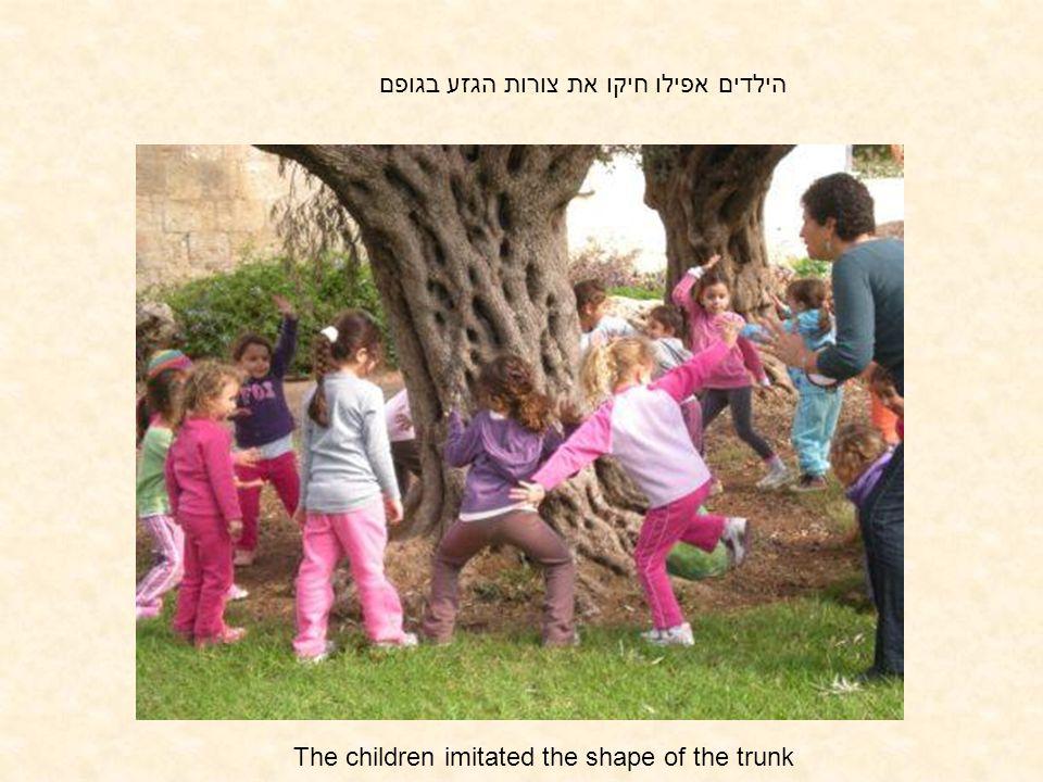 הילדים אפילו חיקו את צורות הגזע בגופם The children imitated the shape of the trunk