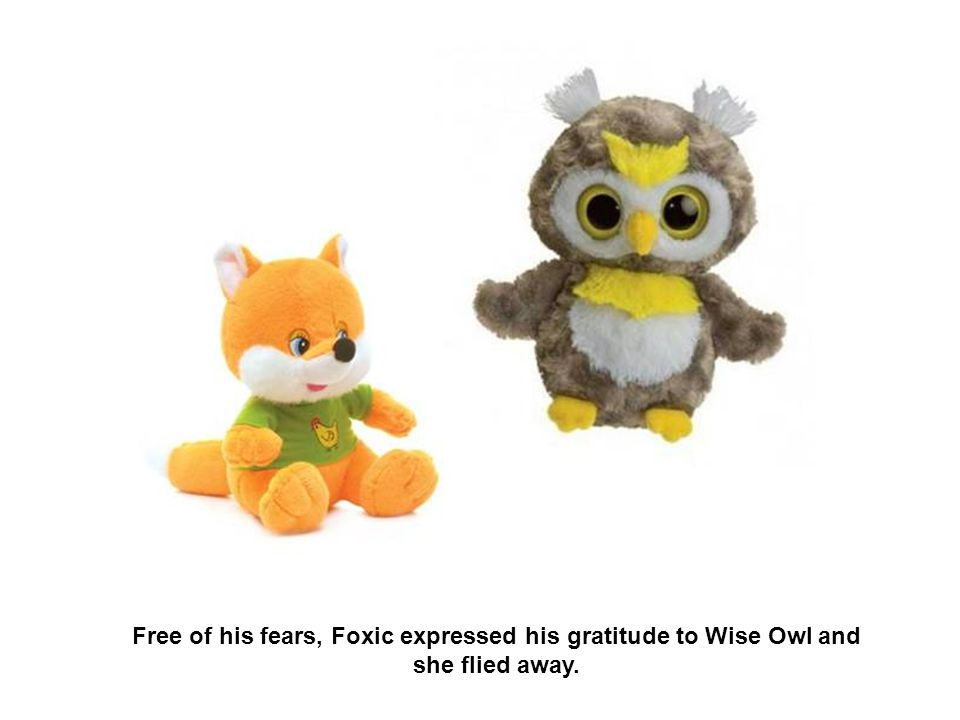 Wise Owl knew a secret method of healing and Foxic got rid of his fears playfully and fast.