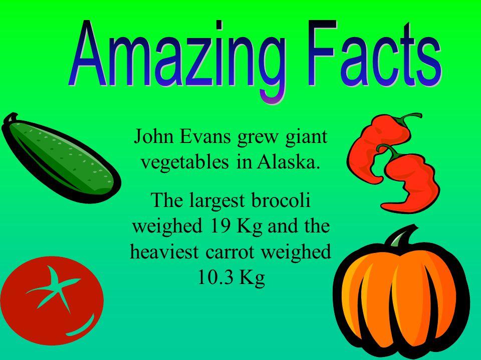 John Evans grew giant vegetables in Alaska.