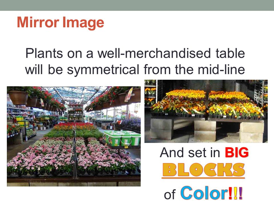 Illusion of Fullness Spread plants out evenly across available space Do NOT bunch plants unevenly and leave large open gaps of table space