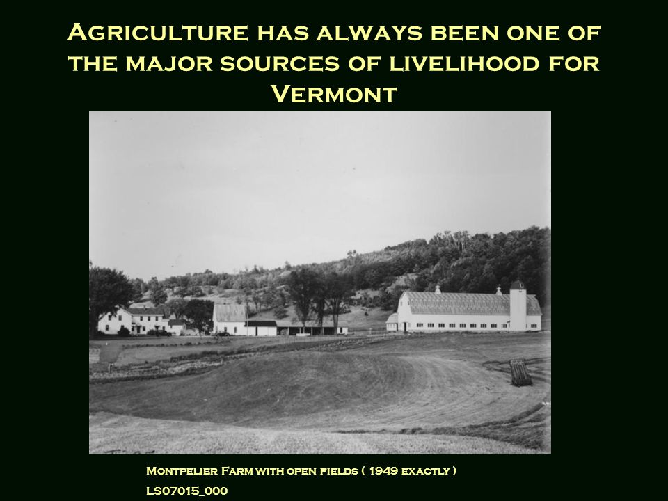 Agriculture has always been one of the major sources of livelihood for Vermont Montpelier Farm with open fields ( 1949 exactly ) LS07015_000