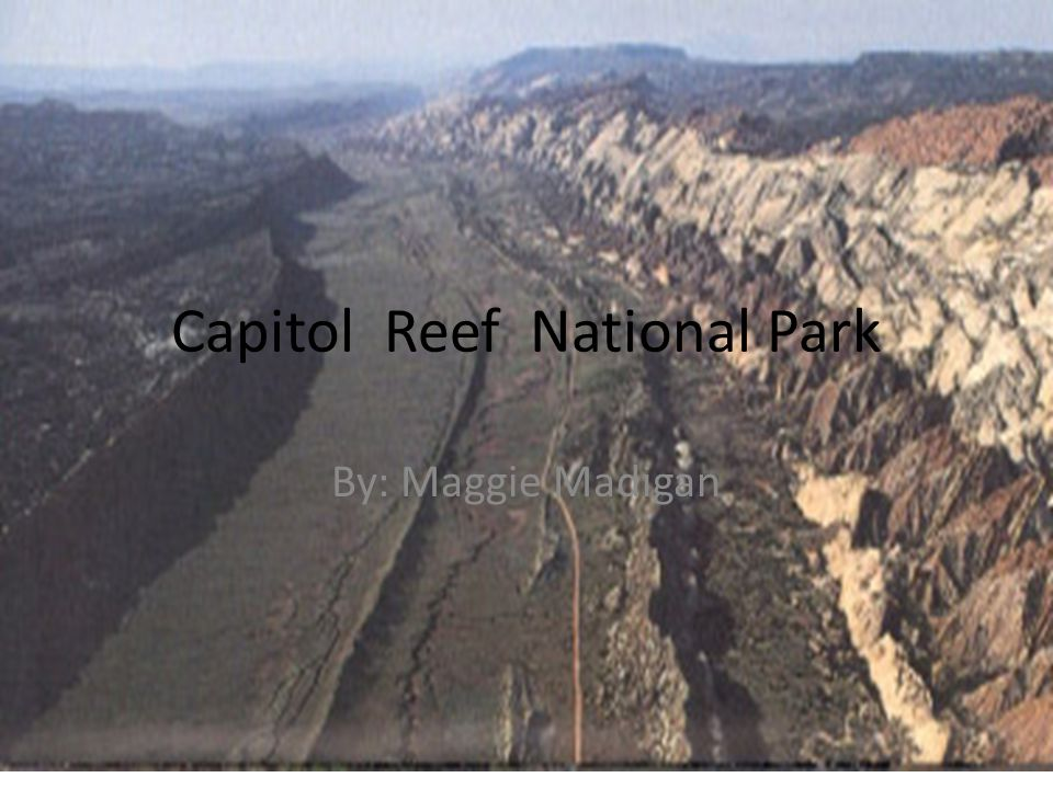 Capitol Reef National Park By: Maggie Madigan