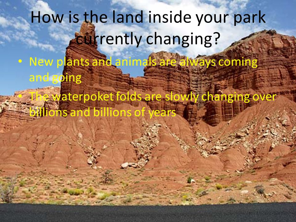 What environmental issues are affecting your park Temperature and weathering are big environmental issues because June and July are their thunderstorm months and capitol reef is mainly rock so when the rain hits some of the loose rocks will be carried away by water