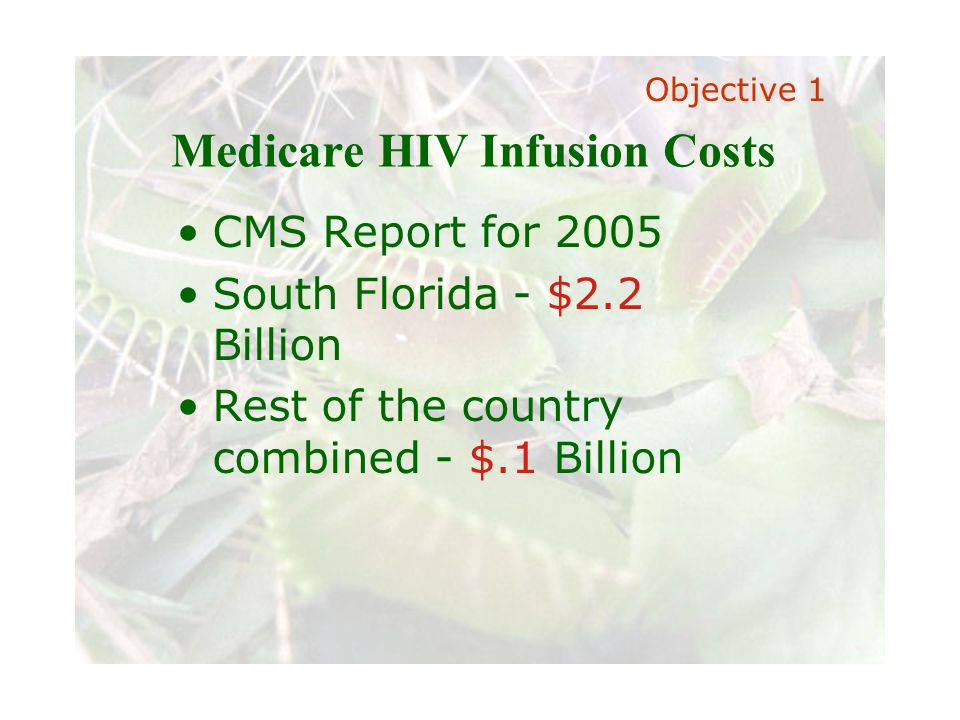 Slide 11 Joint meeting of the RDU IIA and ISACA chapters November 11, 2008, Capitol Club, Raleigh, NC Medicare HIV Infusion Costs Objective 1 CMS Report for 2005 South Florida - $2.2 Billion Rest of the country combined - $.1 Billion