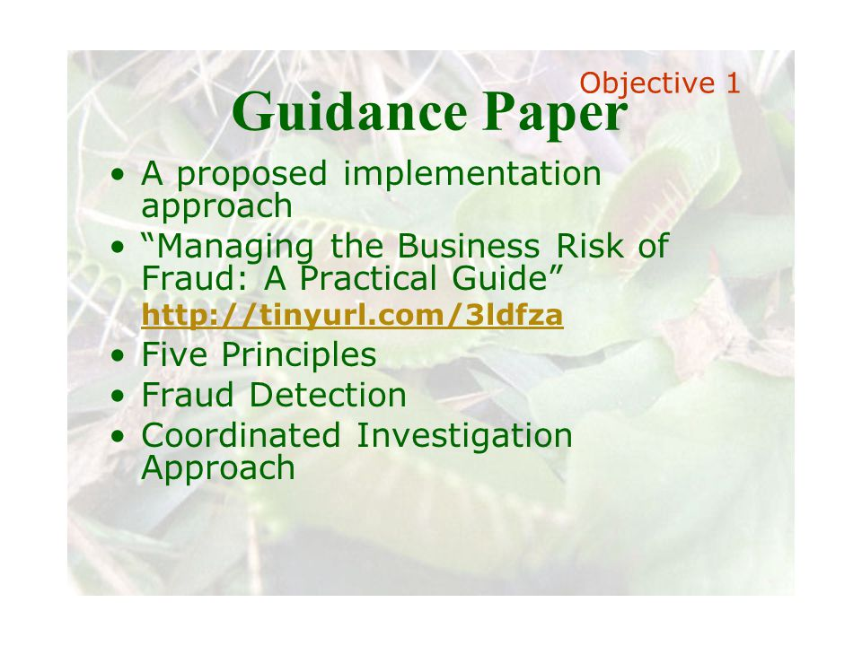 Slide 13 Joint meeting of the RDU IIA and ISACA chapters November 11, 2008, Capitol Club, Raleigh, NC Guidance Paper A proposed implementation approach Managing the Business Risk of Fraud: A Practical Guide http://tinyurl.com/3ldfza http://tinyurl.com/3ldfza Five Principles Fraud Detection Coordinated Investigation Approach Objective 1