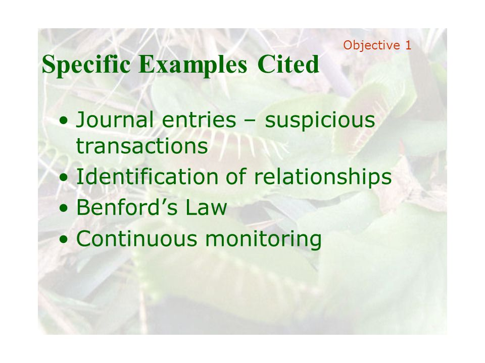 Slide 17 Joint meeting of the RDU IIA and ISACA chapters November 11, 2008, Capitol Club, Raleigh, NC Specific Examples Cited Journal entries – suspicious transactions Identification of relationships Benford's Law Continuous monitoring Objective 1