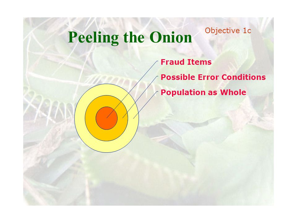 Slide 19 Joint meeting of the RDU IIA and ISACA chapters November 11, 2008, Capitol Club, Raleigh, NC Peeling the Onion Fraud Items Possible Error Con