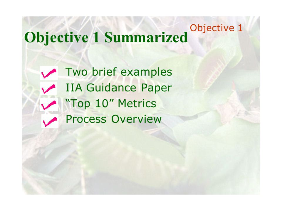 Slide 28 Joint meeting of the RDU IIA and ISACA chapters November 11, 2008, Capitol Club, Raleigh, NC Objective 1 Summarized Two brief examples IIA Guidance Paper Top 10 Metrics Process Overview Objective 1