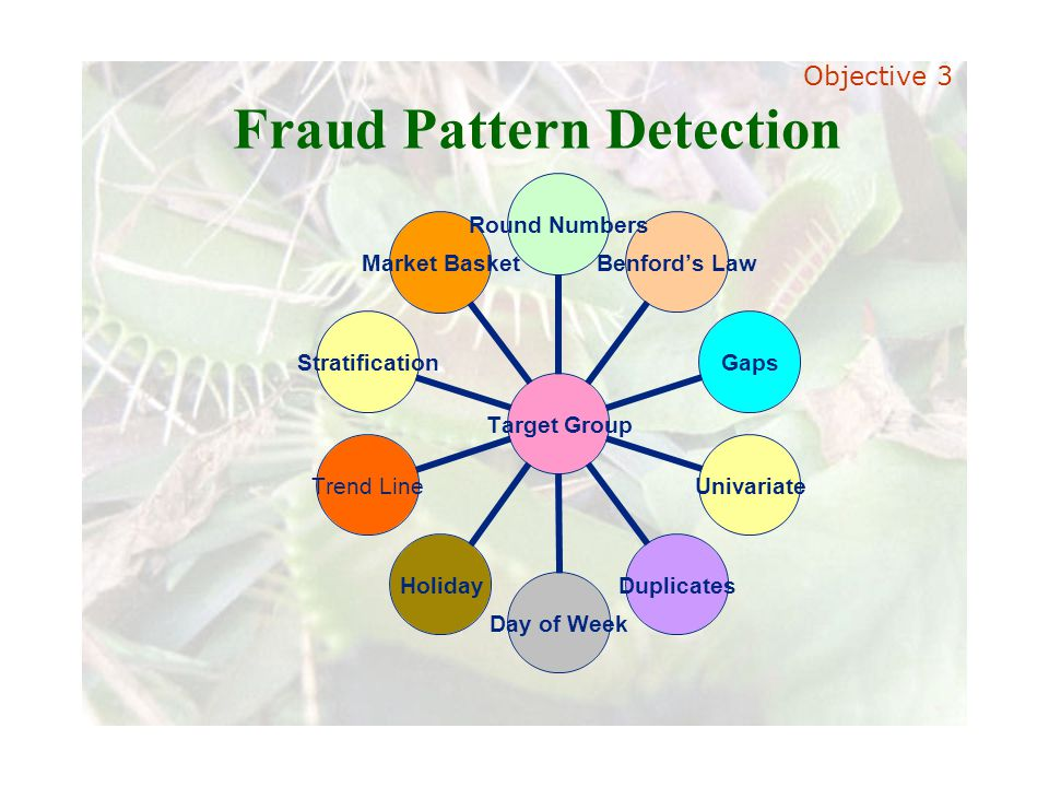 Slide 48 Joint meeting of the RDU IIA and ISACA chapters November 11, 2008, Capitol Club, Raleigh, NC Fraud Pattern Detection Target Group Round Numbe