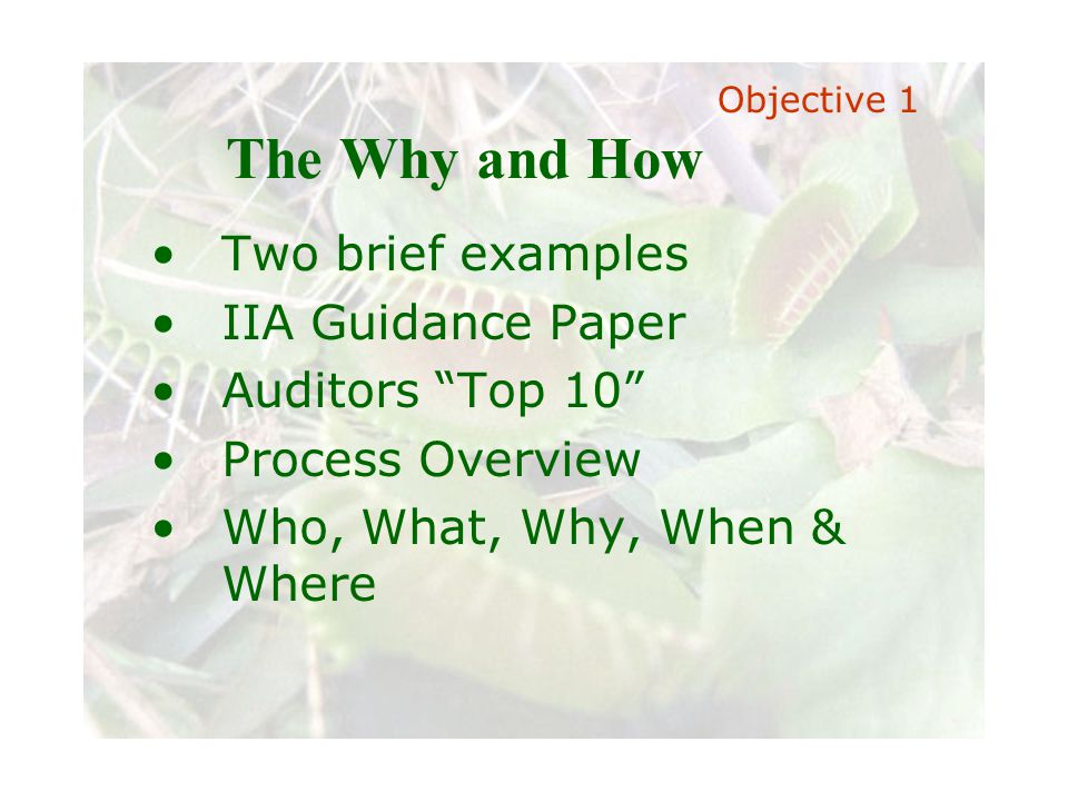 Slide 5 Joint meeting of the RDU IIA and ISACA chapters November 11, 2008, Capitol Club, Raleigh, NC The Why and How Two brief examples IIA Guidance P