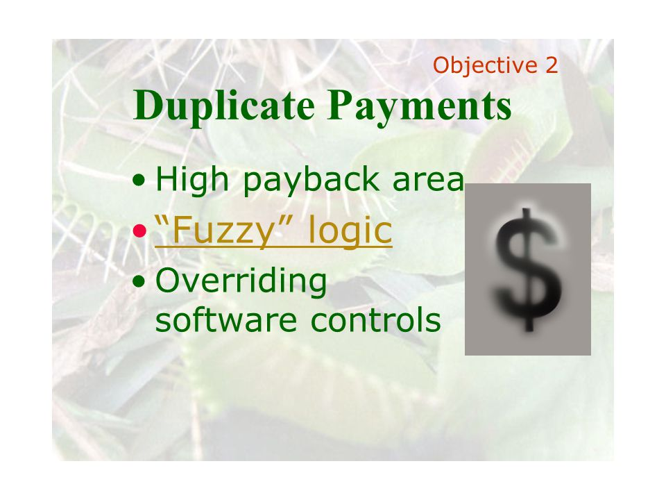 Slide 57 Joint meeting of the RDU IIA and ISACA chapters November 11, 2008, Capitol Club, Raleigh, NC Duplicate Payments High payback area Fuzzy logic Overriding software controls Objective 2