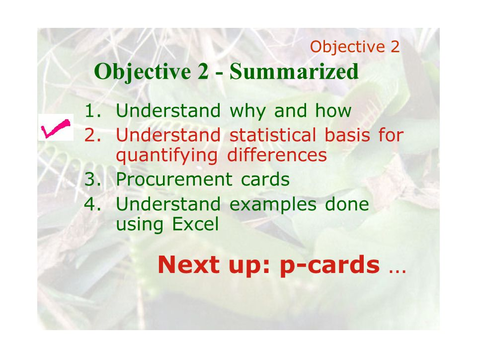 Slide 66 Joint meeting of the RDU IIA and ISACA chapters November 11, 2008, Capitol Club, Raleigh, NC Objective 2 - Summarized 1.Understand why and how 2.Understand statistical basis for quantifying differences 3.Procurement cards 4.Understand examples done using Excel Next up: p-cards … Objective 2
