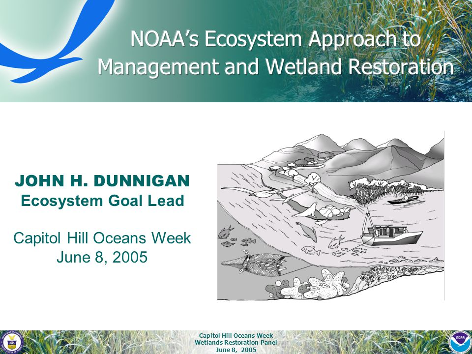 Capitol Hill Oceans Week Wetlands Restoration Panel June 8, 2005 JOHN H. DUNNIGAN Ecosystem Goal Lead Capitol Hill Oceans Week June 8, 2005
