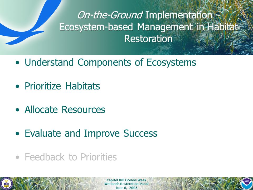 Capitol Hill Oceans Week Wetlands Restoration Panel June 8, 2005 Understand Components of Ecosystems Prioritize Habitats Allocate Resources Evaluate a