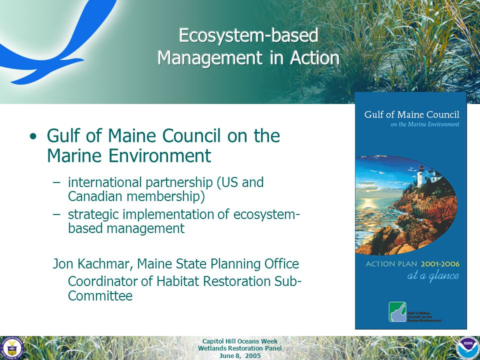 Capitol Hill Oceans Week Wetlands Restoration Panel June 8, 2005 Gulf of Maine Council on the Marine Environment –international partnership (US and Ca