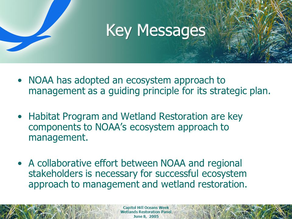 Capitol Hill Oceans Week Wetlands Restoration Panel June 8, 2005 NOAA has adopted an ecosystem approach to management as a guiding principle for its s