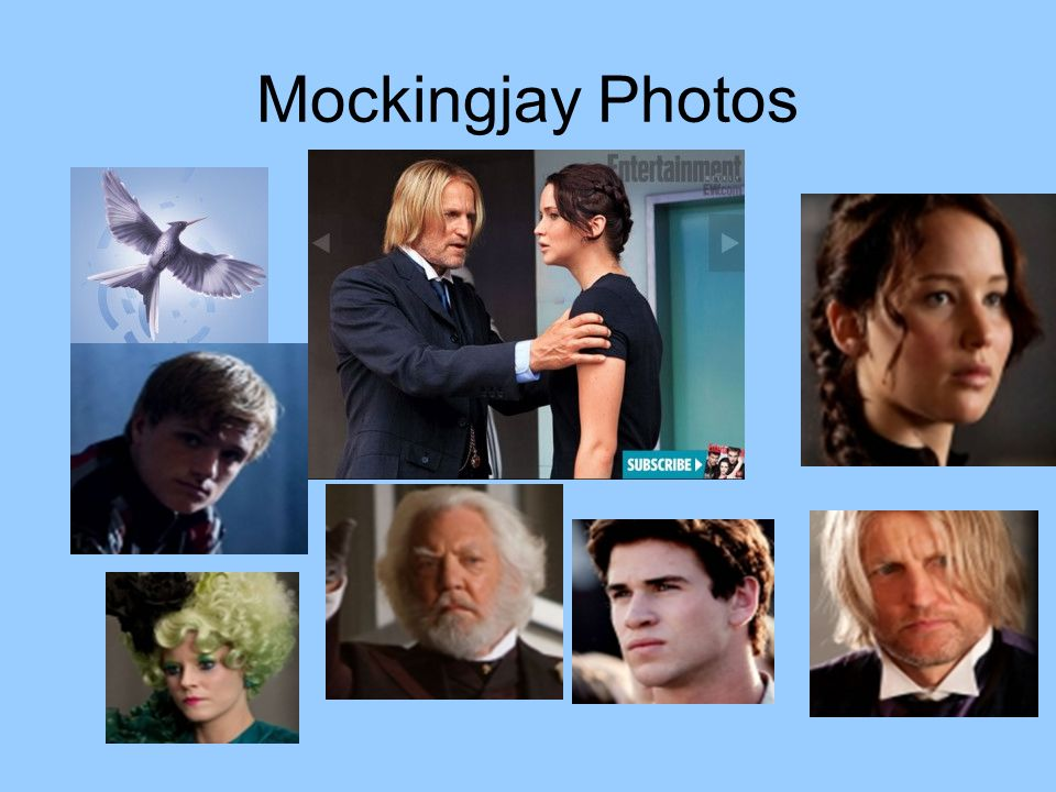 Mockingjay Photos