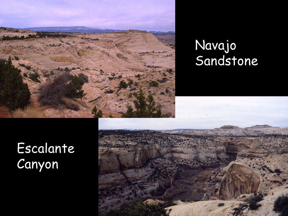 Navajo Sandstone Escalante Canyon