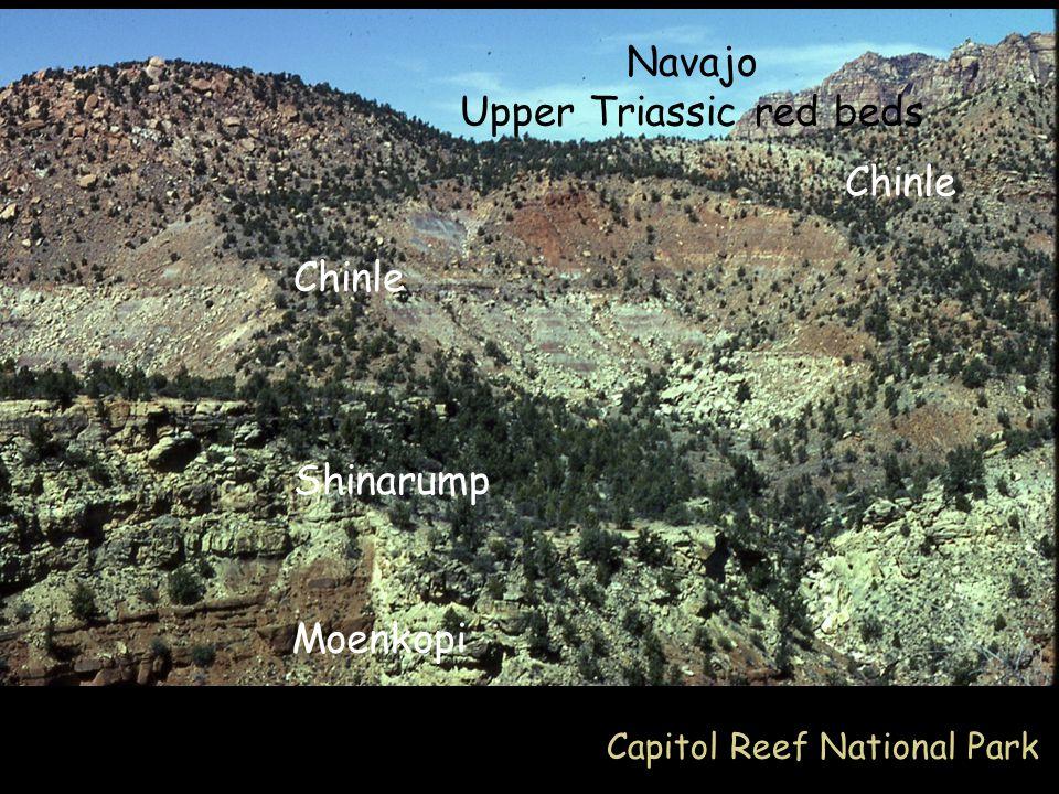 Moenkopi Shinarump Chinle Navajo Upper Triassic red beds Chinle