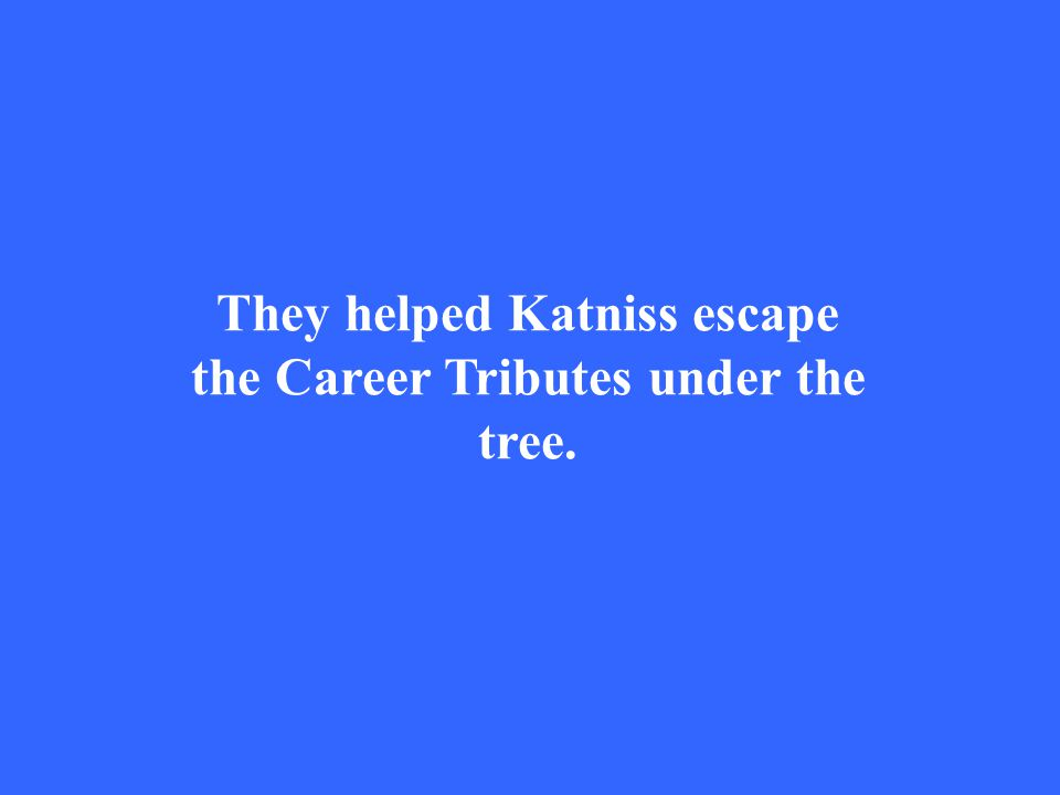They helped Katniss escape the Career Tributes under the tree.