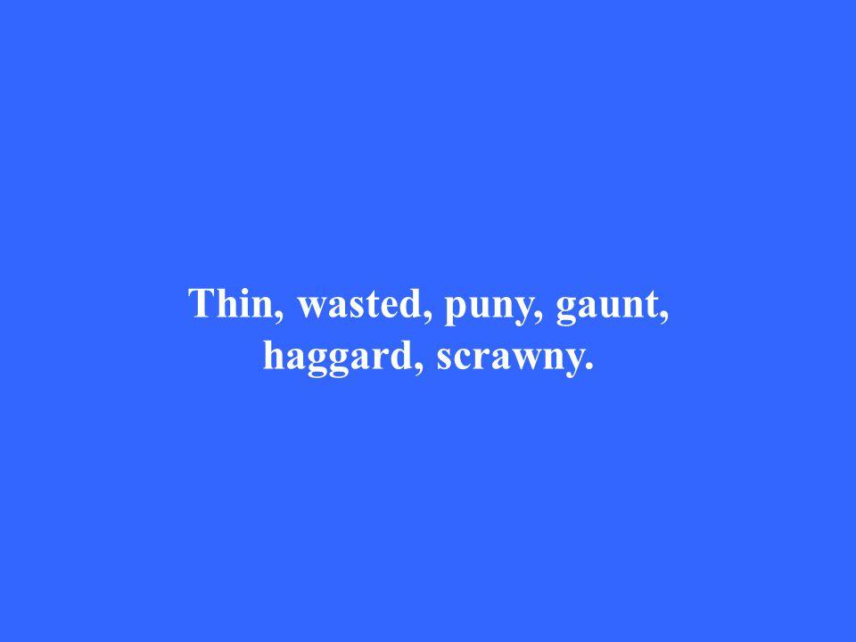 Thin, wasted, puny, gaunt, haggard, scrawny.