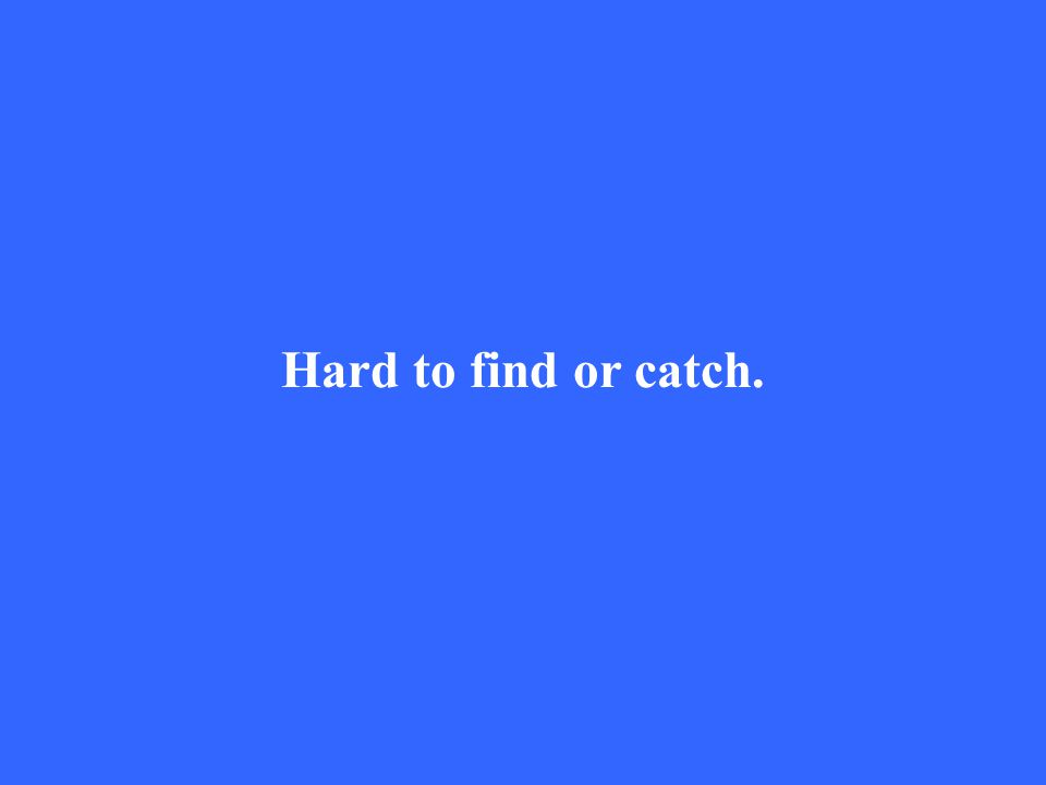 Hard to find or catch.