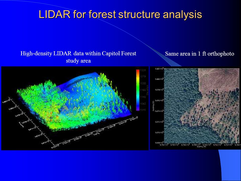 LIDAR for forest structure analysis High-density LIDAR data within Capitol Forest study area Same area in 1 ft orthophoto
