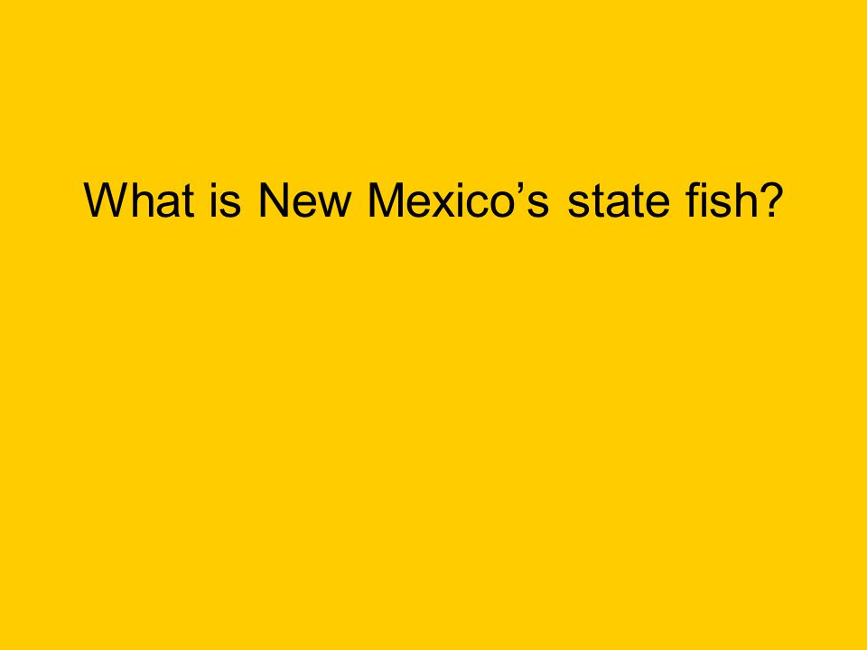 What is New Mexico's state fish?