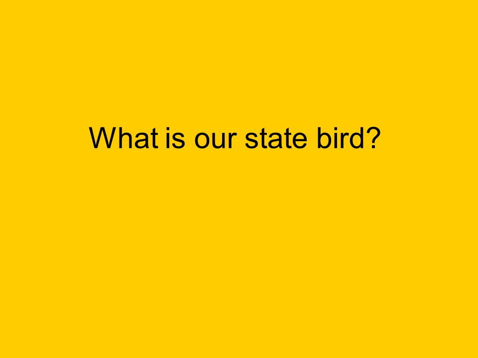What is our state bird?