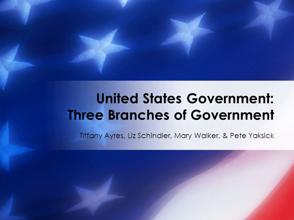 Brain Target 4 – Teaching for Mastery Learning Objective: Students will understand the major concepts that formed and make up United States government.